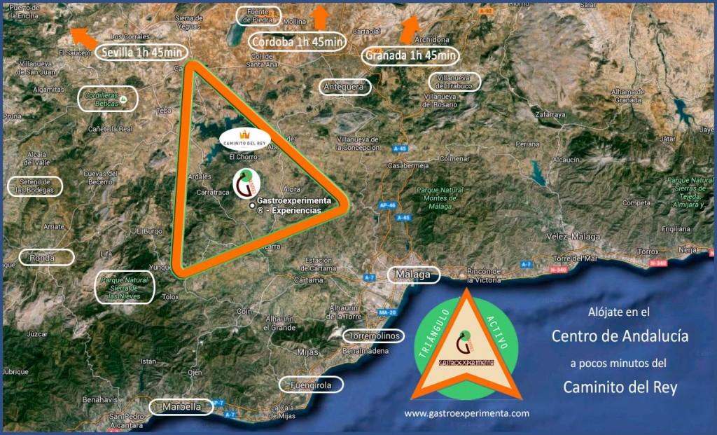 Triangulo Activo Gastroexperimenta